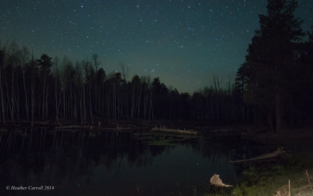 Stars over Pond